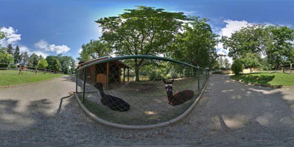 Tierpark Limbach-Oberfrohna 3